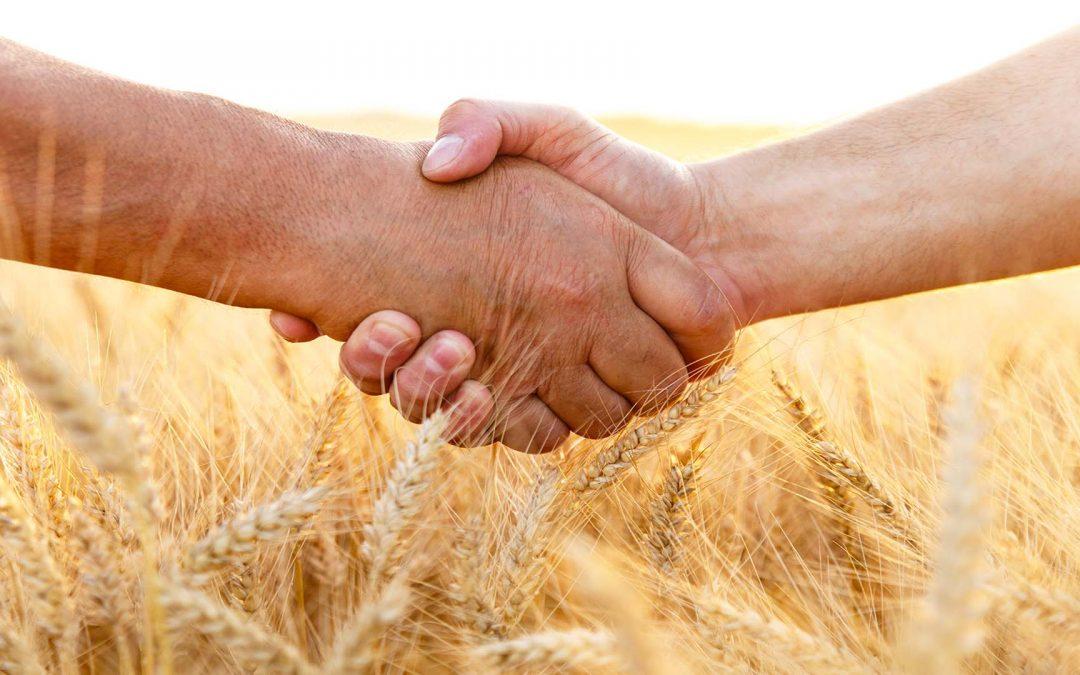 Wie sieht die Europäische Agrarpolitik der Zukunft aus?