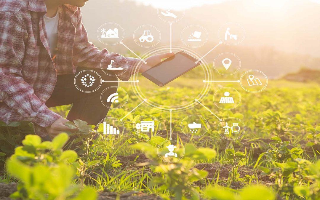 Landwirt: unternehmerische Kompetenz ist gefragt