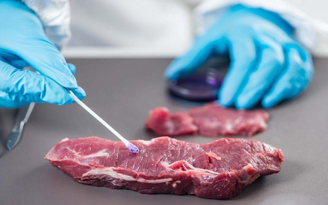 Macht Laborfleisch die klassische Tierhaltung überflüssig?
