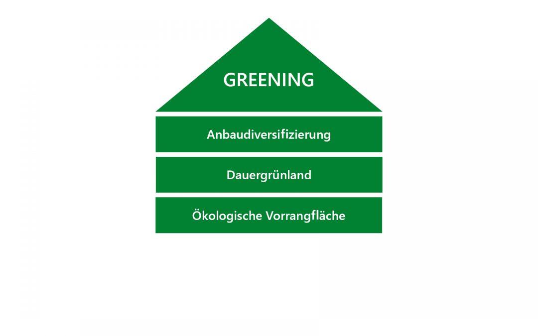 """""""Greening"""" – was ist das?"""
