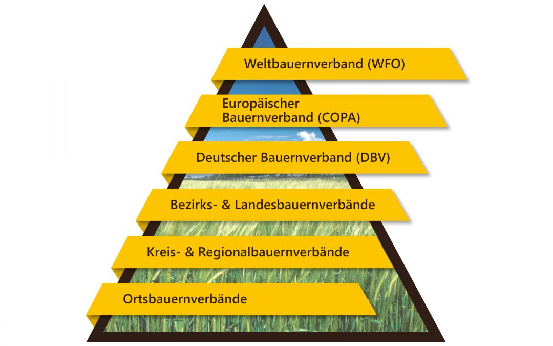 Landwirtschaftliches Verbandswesen im Überblick