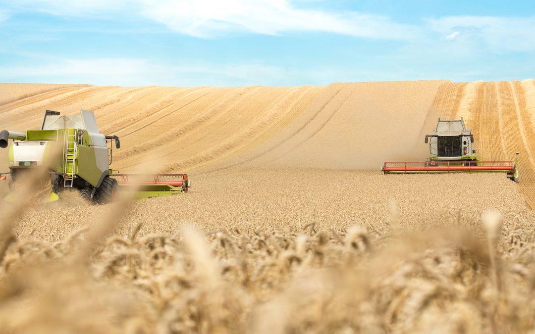 Agrarpolitik-Trends: Was kommt 2019 auf uns zu?