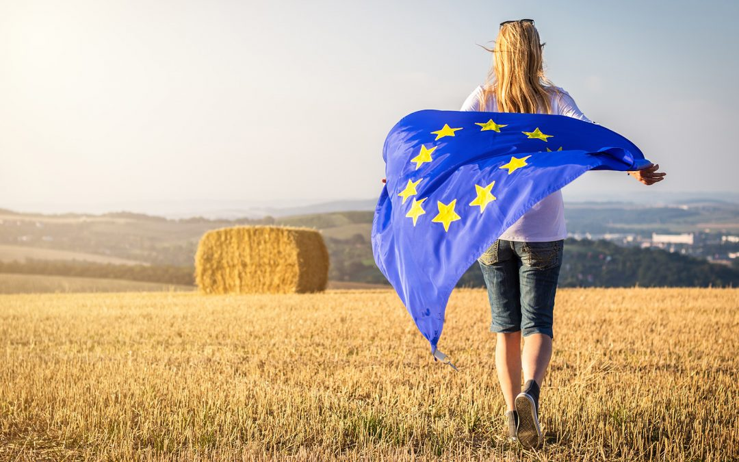 Europawahl: Auswirkungen auf die Landwirtschaft in DE