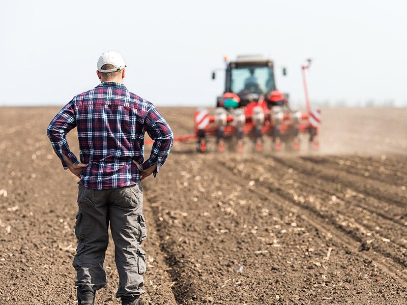 Stimmung 2020: Nur jeder dritte Landwirt plant Investitionen