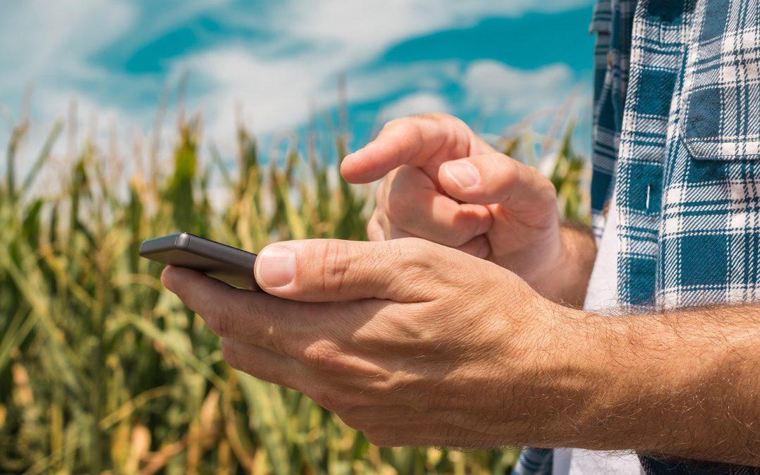 Agrarhandel per Mausklick: Zahl der Online-Plattformen boomt