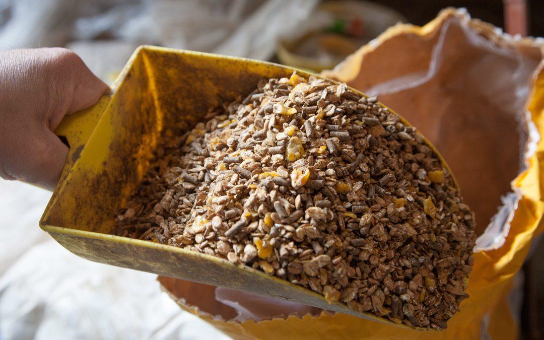 Futtermittel-Branche spürt den Strukturwandel