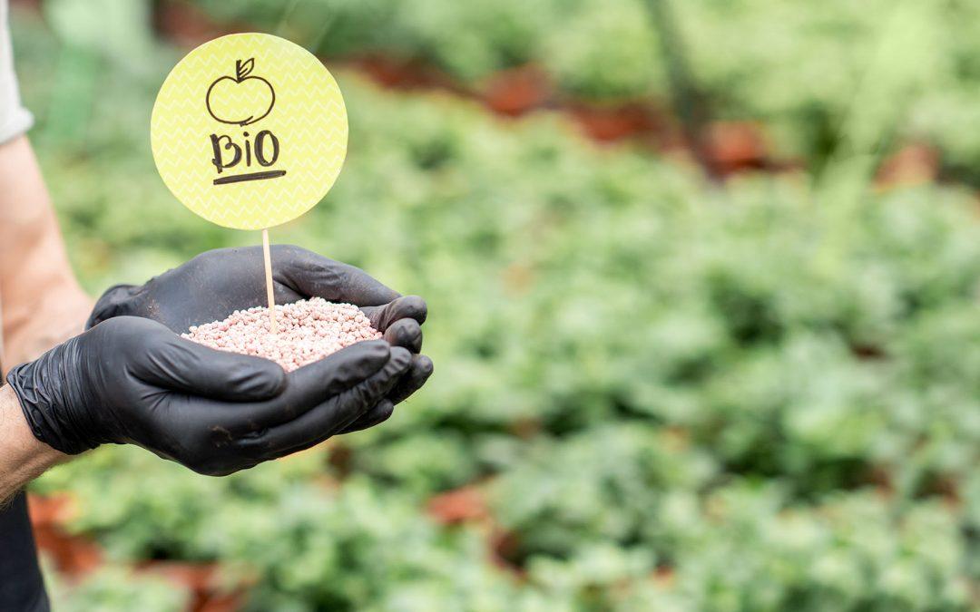 Öko-Landwirtschaft wächst auf mehr als 10 % der Anbaufläche