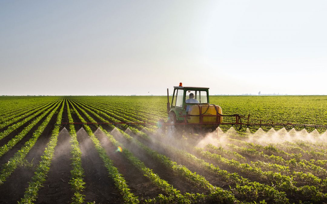 """""""Farm-to-Fork""""-Strategie der EU: Neue Auflagen für Landwirte"""