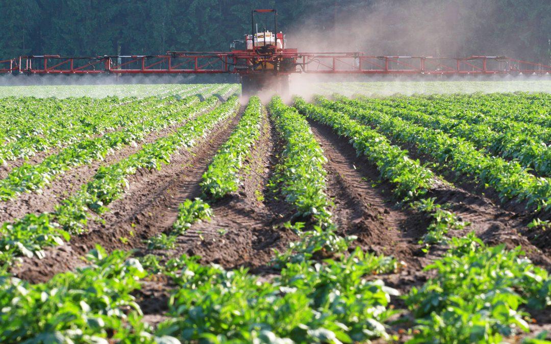 Pflanzenschutzmarkt im Abwärtstrend